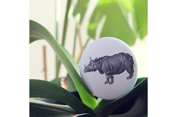 Rhinocerossite