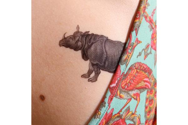 rhinosite